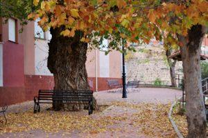 La soledad del otoño