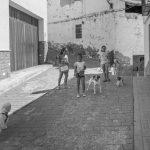 javier-ferrer-puerto-chicas-perros-y-cuerdas