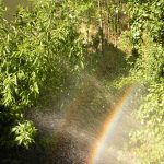 mar-lozano-lorente-arcoiris