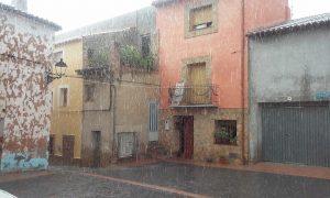 jacinta-flor-flor-lluvia-en-el-alto