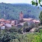 jose-lucas-segarra-gavarri-entre_la_naturaleza